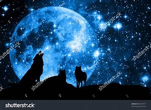 Wolves Pack Silhouette Against Blue Starred Stock Photo ...