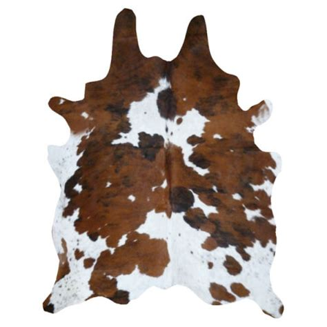 How To Make A Cowhide Rug by 12 Best Cowhide Rugs Of 2017 Brown Black And