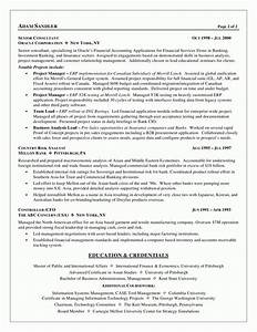 business analyst resume examples template With best business resume