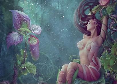Fantasy Digital Flower Poison Ivy Fairy Wallpapers