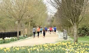 daffodils  runners victoria park  albert bridge