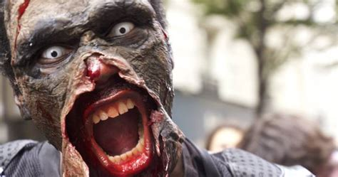 zombie warning issued  florida city  power outage