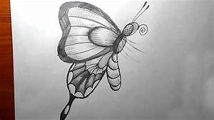 How To Draw A Butterfly Pencil Drawing