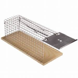 Lebendfalle Für Mäuse : paket proheim lebendfalle f r m use und ratten 30 cm robust mit 1 eingang ceres webshop ~ Buech-reservation.com Haus und Dekorationen