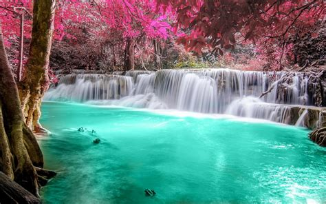 waterfall colorful tropical turquoise nature pink landscape forest thailand leaves river pond desktop backgrounds hd wallpapers trees