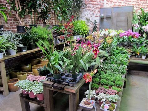 rolling greens culver city 1000 images about our stores on pinterest greenhouses crates and hollywood