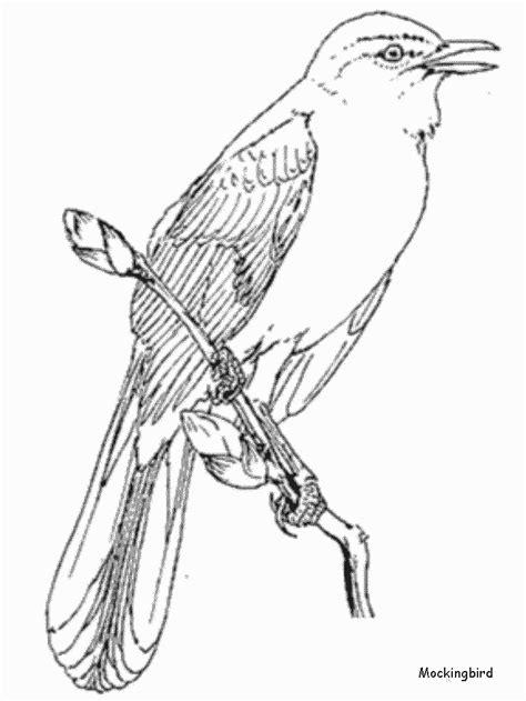 printable mockingbird animals coloring pages coloringpagebookcom