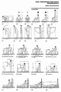 Image Result For Ergonomic Human Factor For Chairs