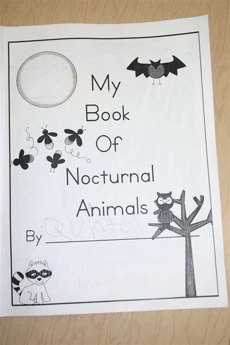nocturnal animals preschool lesson plans mrs bagby s kindergarten nocturnal animals science 418