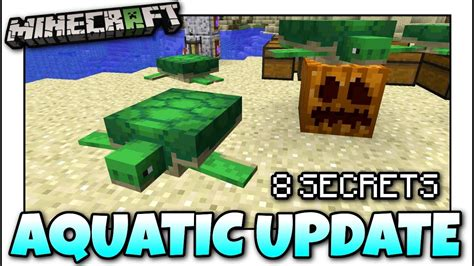 Minecraft  8 Update Aquatic Secrets ! You Might Not Know