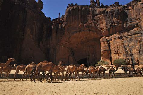 hidden jewel   sahara traveleering