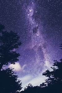 clouds, galaxy, purple, stars, trees - image #4007706 by ...