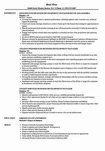 Services business development manager resume samples for Resume development services
