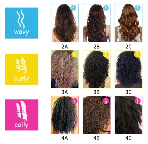 Different Types Of Hair by Hair Types 4a 4b And 4c