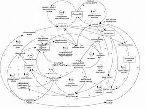 New Model For Understanding Depression