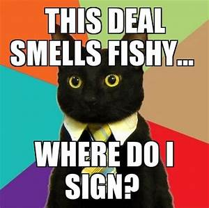 This Deal Smells Fishy Cat Meme - Cat Planet | Cat Planet