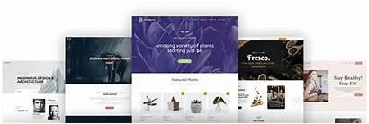 Astra Theme Themes Wordpress Templates Website Sales