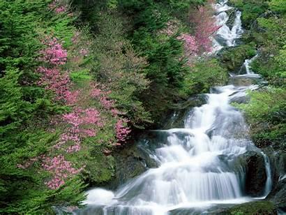 Waterfall Amazing Flowers Japan Wallpapers