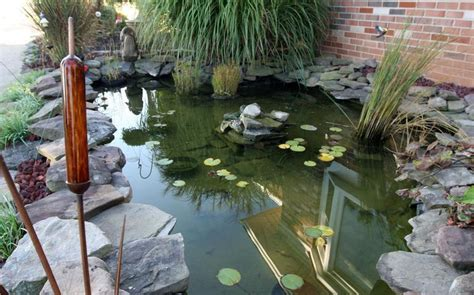 garden koi pond design koi pond water garden design home design exles