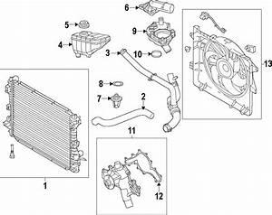 Ford Mustang Radiator Coolant Hose  Lower   4 0 Liter