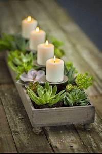 decorazioni con le piante grasse! Ecco 20 splendide idee
