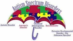 Autism Spectrum Disorders  U2013 Asd