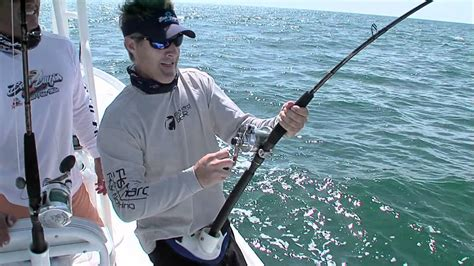 grouper goliath sean goldman caught giant