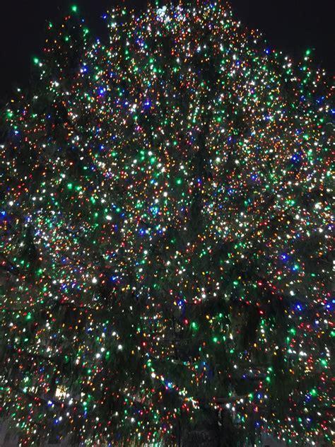new york christmas tree 2015 by gothnebula on deviantart