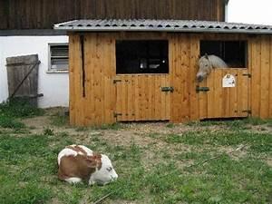 Pferdestall Aus Holz : wie teuer ist der bau von einem pferdestall pferde kosten bauen ~ Eleganceandgraceweddings.com Haus und Dekorationen
