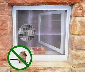 Gitter Für Kellerfenster : insektenschutz f r kellerfenster mit nagersicherem edelstahlgitter ~ Sanjose-hotels-ca.com Haus und Dekorationen