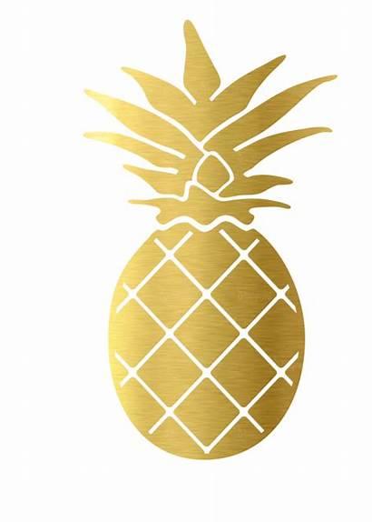 Pineapple Transparent Clipart Decal Sticker Clip Leaf