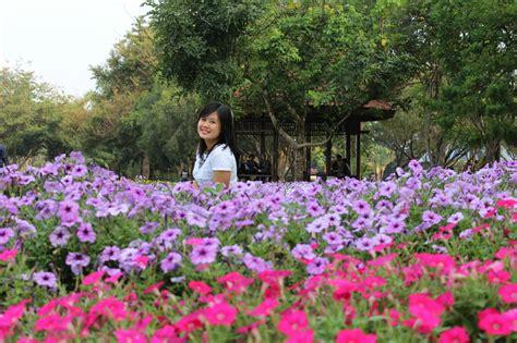 taman bunga nusantara mengintip keindahan bunga bunga dunia