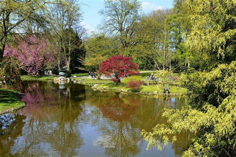 Garten Und Landschaftsbau Berlin Lichtenberg by Manfred Binner Garten Und Landschaftsbau 12305 Berlin