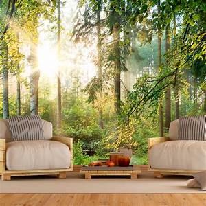 3d Tapete Wald : vlies fototapete 3 farben zur auswahl tapeten natur landschaft c c 0032 a b ebay ~ Frokenaadalensverden.com Haus und Dekorationen