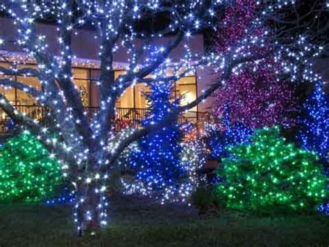 blue outdoor christmas lights how to wrap a tree with lights christmas lights etc blog