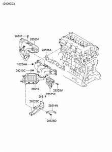2007 Hyundai Sonata Manifold Catalytic Assembly