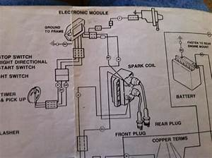1987 Harley Davidson Softail Custom Turn Signal Wiring Diagram
