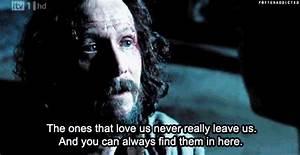 19 Harry Potter... Sirius Azkaban Quotes