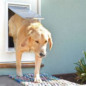 Endura flap pet door for doors dog doors petdoors for Door with dog door in it
