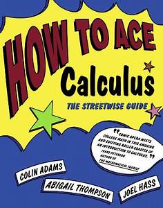 How To Ace Calculus  The Streetwise Guide