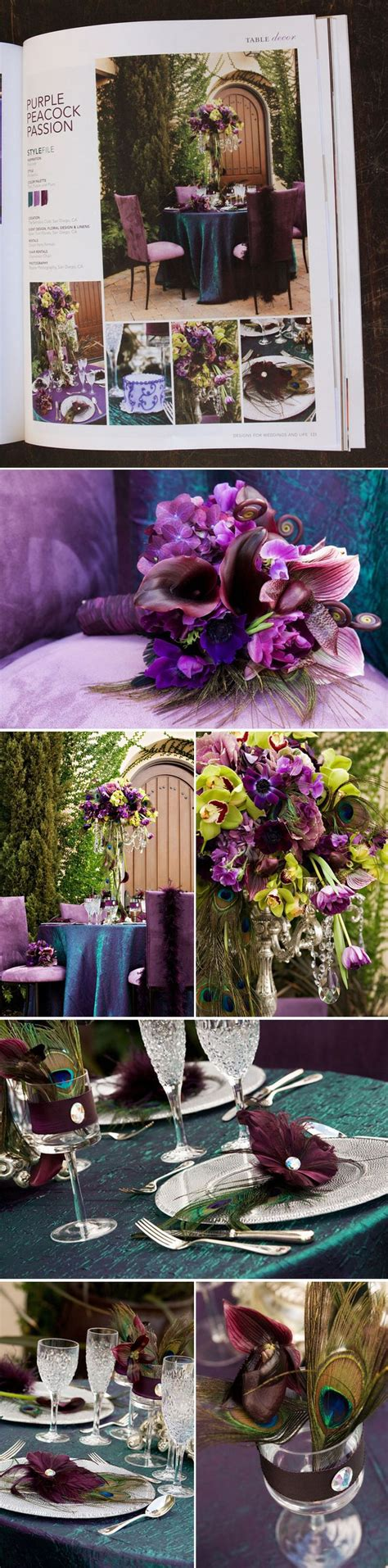 10 best Peacock Weddings images on Pinterest Lilac