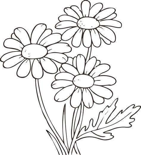 mewarnai bunga mawar dalam pot 13 gambar bunga sama pot