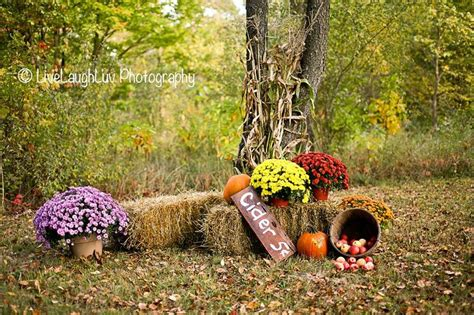 Family Pictures With Backdrop by Sneak Peak Of The Awesome Fall Mini Session Set Up Live