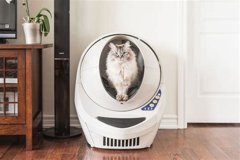 self cleaning litter box amazon 5 household robots that will do annoying chores for you