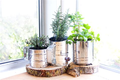 Indoor Herbs Garden Ideas