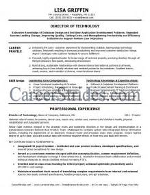 sle it director resume sle it director resume it resume cio sle resume chief information officer resume it