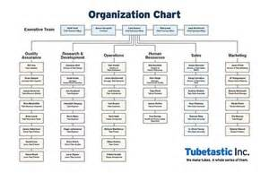 Job Title in Corporate Hierarchy Chart