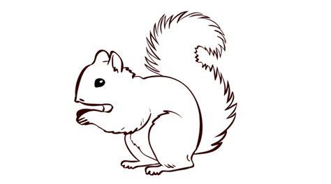 eichhörnchen zum basteln spiele und basteln olis bahnwelt