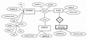 Er Diagram Examples For Student Information System  Er