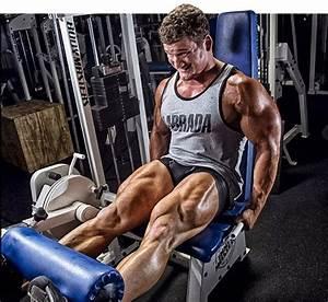 workout tips for bodybuilding legs bodydulding